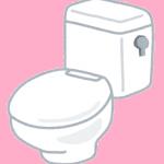 トイレのフタカバー!リメイク方法は?【O型→特殊型】