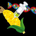 遺伝子操作を人間にした場合のメリット・デメリットは?