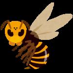 蜂に刺された場合の対処法は?